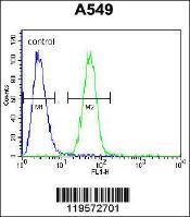 Anti-CARD16 Rabbit Polyclonal Antibody (APC (Allophycocyanin))