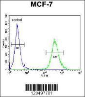 Anti-CYB561D1 Rabbit Polyclonal Antibody (APC (Allophycocyanin))